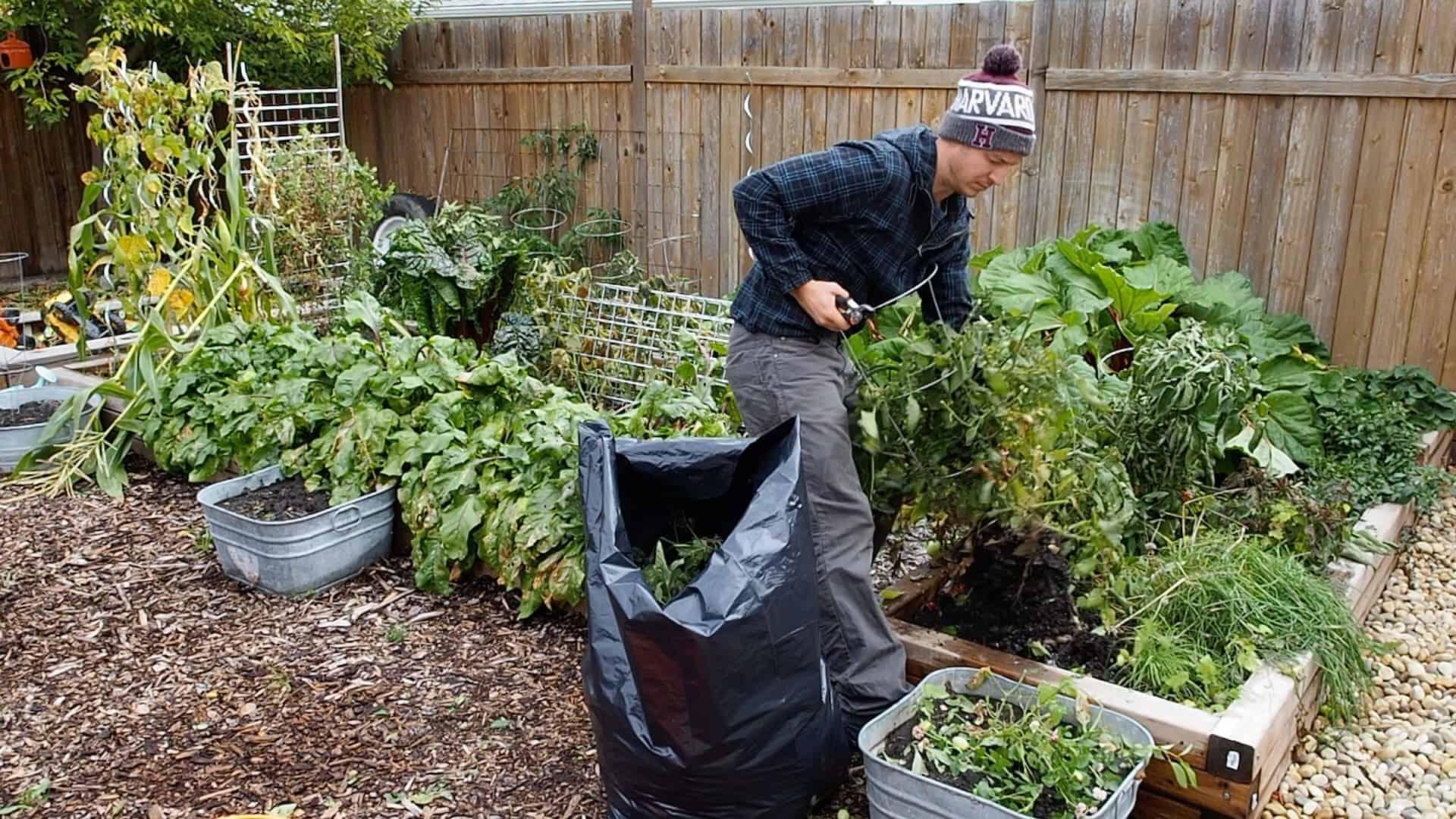 How To Prepare A Garden For Winter