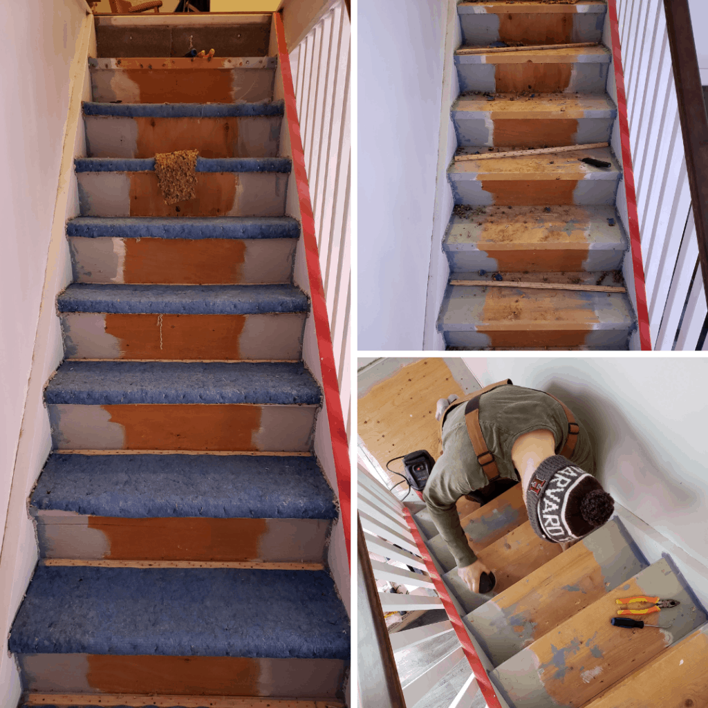 Wood Stairs Painted Risers: Painted Stair Risers And Treads
